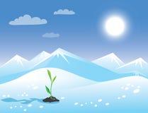 Arktische sonnige Landschaft des Frühlinges mit grünem Sprössling. Lizenzfreies Stockfoto