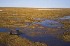 Arktische Tundra von der Luft Stockfotos