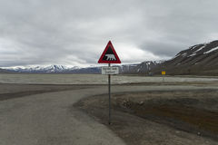 Arktisches Tal Adventdalen, Svalbard Lizenzfreie Stockfotos