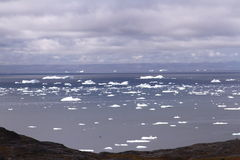 Arktisk Grönland för drivais Fotografering för Bildbyråer