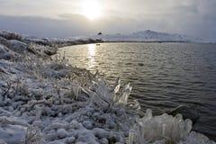 arktisk lake Royaltyfri Fotografi