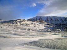 arktisk liggande Royaltyfri Fotografi