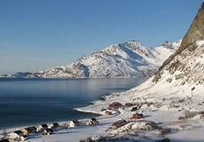 arktiska norway Royaltyfria Bilder
