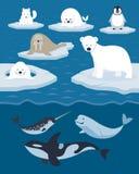 Arktiskt djurtecken och bakgrund Royaltyfri Illustrationer