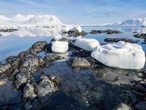 Arktiskt landskap - is, havet, berg, glaciärer - Spitsbergen, Svalbard Fotografering för Bildbyråer