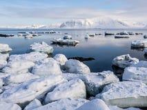 Arktiskt landskap - is, havet, berg, glaciärer - Spitsbergen, Svalbard Royaltyfri Fotografi