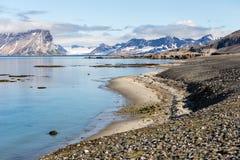 Arktiskt sommarlandskap - Spitsbergen, Svalbard Fotografering för Bildbyråer