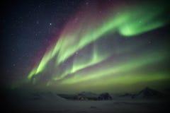 Arktiskt vinterlandskap med nordliga ljus - Svalbard, Spitsbergen Royaltyfria Foton