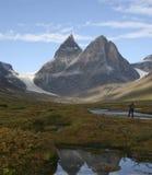 arktyczna sceneria Zdjęcie Stock