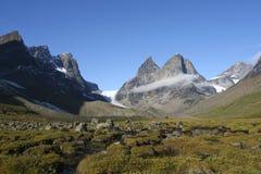 arktyczna sceneria Obrazy Stock