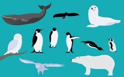 Arktyczni i Antarctica zwierzęta royalty ilustracja