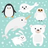 Arktyczny biegunowy zwierzę set Biały niedźwiedź, sowa, pingwin, foki ciuci dziecka harfa, zając, królik, narwhal, ryba Dzieciak  Fotografia Stock