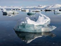 Arktyczny krajobraz Spitsbergen, Svalbard - lód, morze, góry, lodowowie - Zdjęcia Stock