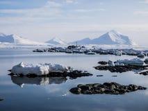 Arktyczny krajobraz Spitsbergen, Svalbard - lód, morze, góry, lodowowie - Zdjęcie Stock