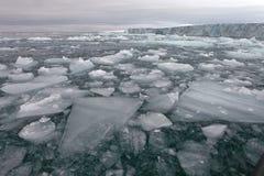 Arktyczny lodowiec Zdjęcie Royalty Free