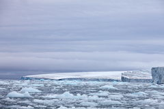 Arktyczny lodowiec Zdjęcia Royalty Free