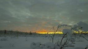 Arktyczny zmierzch w północy Rosja zdjęcie wideo