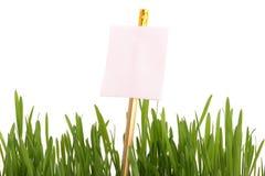 arkusz informacyjny trawy Zdjęcia Stock