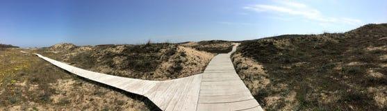 Arkutino海滩木道路 库存照片