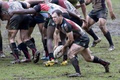 arlekinów ligowa Melbourne rgl rugby burza vs Fotografia Royalty Free