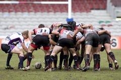 arlekinów ligowa Melbourne rgl rugby burza vs Obrazy Stock