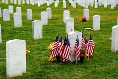 Arlingotn National Cemetery Grave stones and Flags Stock Images