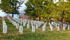 arlington εθνικές ταφόπετρες νεκροταφείων Στοκ Εικόνες