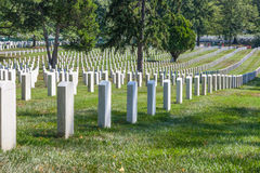 Arlington Cemetary, Washinton, DC Royalty Free Stock Images