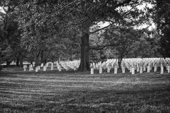 Arlington Cemetery in Black and White Stock Images
