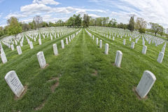 Arlington cemetery graveyard in black and white Stock Photography
