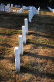Arlington Cemetery. The military graves in the Arlington Cemetery Royalty Free Stock Photos