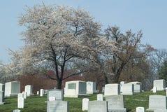 Arlington Cemetery2 nacional Imagem de Stock