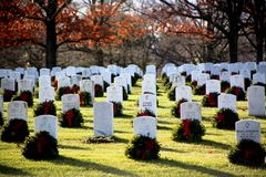Arlington cemetery. Sunny unknown soldier royalty free stock image