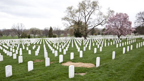 Arlington Cemetery in Washington DC Royalty Free Stock Photo