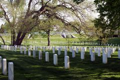 Arlington Gravestones. Rows of gravestones in Arlington National Cemetery Royalty Free Stock Image