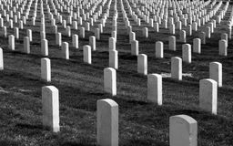 Arlington Headstones. Arlington National Cemetery royalty free stock photography
