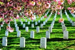 Arlington Krajowy cmentarz fotografia royalty free