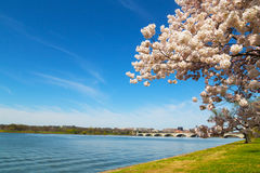 Arlington Memorial Bridge across Potomac River in Washington DC. Royalty Free Stock Photography