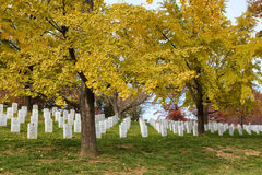 Arlington National Cemetary Stock Photo