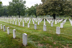 Arlington National Cemetary in the United States Stock Image
