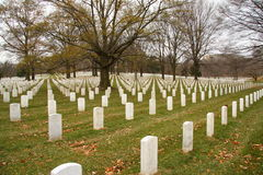 Arlington National Cemetery. Perfectly aligned tombstones at Arlington National Cemetery Stock Photos