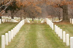 Arlington National Cemetery. Perfectly aligned tombstones at Arlington National Cemetery Royalty Free Stock Photo
