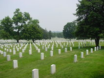 Arlington National Cemetery. With rows of graves and headstones stock image