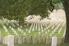 Arlington National Cemetery Royalty Free Stock Photography