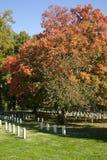 Arlington National Cemetery. View of the Arlington National Cemetery in the fall Royalty Free Stock Photos