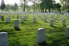 Arlington National Cemetery. White headstones lined up in Arlington National Cemetery Stock Images