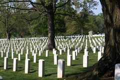 Arlington National Cemetery. Rows of white headstones in Arlington National Cemetery Stock Photography