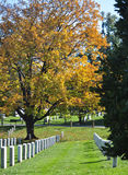 Arlington National Cemetery 6. View of the National Cemetery in Arlington Virginia. The cemetery is the final resting place for American servicemen. Also Stock Image