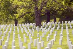 Arlington National Cemetery. Rows of toombstones mark the graves of over 300'00 American troops from the Army, Navy and Airforce burried at Arlington National Stock Image