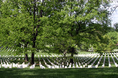 Arlington National Cemetery. White gravestones in Arlington National Cemetery Royalty Free Stock Photos